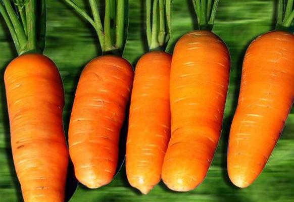 果蔬百科胡萝卜的食疗功效与用法