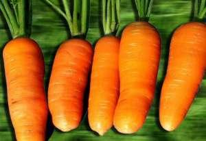 胡萝卜的食疗功效与用法